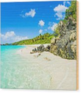 Beautiful Caribbean Beach Wood Print