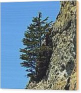 Devil's Slide Hike Wood Print