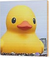 Giant Rubber Duck Visits Taiwan Wood Print