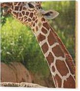 Giraff Wood Print