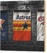 Houston Astros Wood Print
