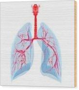 Human Lungs Wood Print