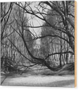 9 Black And White Artistic Painterly Icy Entrance Blocked By Braches Wood Print