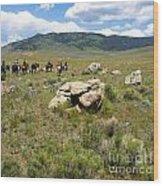 Rock Along The Trail Wood Print