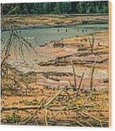 Nisqually Wildlife Refuge Wood Print
