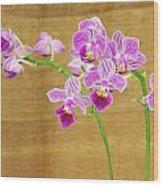 Purple Orchid-12 Wood Print