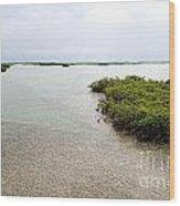 Scenes From Key West Wood Print