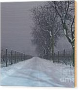 Winter Road Wood Print