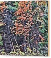9374 Wood Print