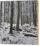 Forest In Winter Wood Print