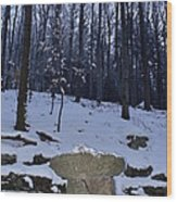 Stone Altar In The Woods Wood Print