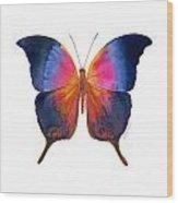 96 Brushfoot Butterfly Wood Print