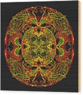 995 - Mandala In Earth Colours   Wood Print