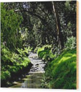 A Babbling Brook Wood Print by Al Bourassa