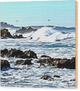 Seascape And Sea Gulls Wood Print