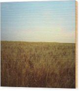 A Barley Crop Sways In The Wind Wood Print