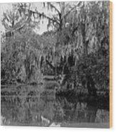 A Bayou Scene In Louisiana Wood Print