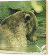 A Bear Bath Wood Print