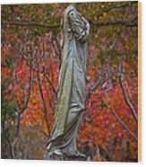 A Beautiful Angel Wood Print