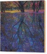 A Beautiful Reflection  Wood Print