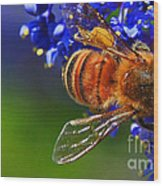 A Bee's Life Wood Print