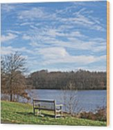 A Bench With A View Wood Print