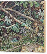 A Birds Nest Among Brambles Wood Print