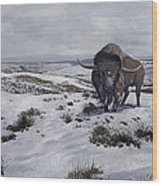 A Bison Latifrons In A Winter Landscape Wood Print