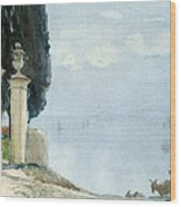 A Blue Day On Como Wood Print