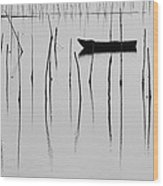 A Boat... In A Jungle Of Poles Wood Print