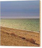A Book On The Beach Wood Print by Robert Bascelli