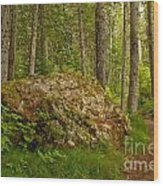 A Boulder In The Rainforest Wood Print