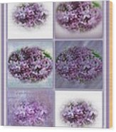 A Bouquet Of Lilacs Wood Print