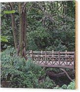 A Bridge In Central Park Wood Print