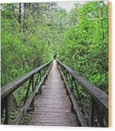 A Bridge To Somewhere Wood Print