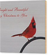 A Bright And Beautiful Merry Christmas To You Wood Print