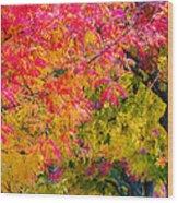 Autumn In Yountville, California Wood Print