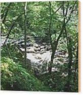 A Brook Between Wood Print
