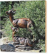 A Buck And His Doe Wood Print