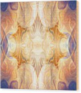 A Burst Of Light Abstract Living Artwork By Omaste Witkowski Wood Print