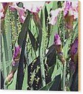 A Bushel Of Pink Wood Print