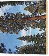 A California Sight Wood Print