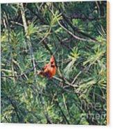A Cardinal Rule Wood Print
