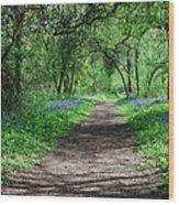 A Carpet Of Colour 2 Wood Print