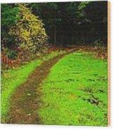A Carpted Path Wood Print