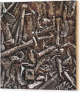A Case Of Curiosities Wood Print by William Fields