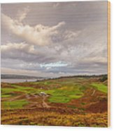 A Chambers Bay Morning Wood Print by Ken Stanback