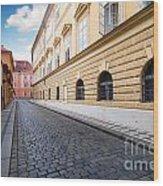 A Charming Street In Prague Wood Print