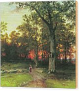 A Child Walks In A Forest Wood Print