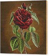 A Chocolate Beauty Wood Print